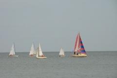 Гонки на яхтах в Приморско-Ахтарске