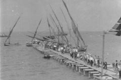 Приморско-Ахтарск - день рыбака