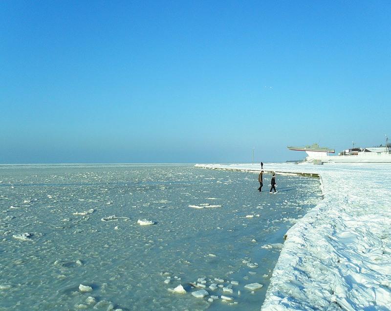Море зимой